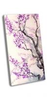 Фиолетовые цветы и бутоны