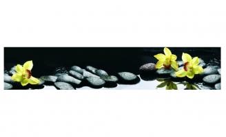 Желтая орхидея на камнях