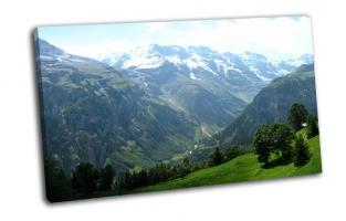 Горы , луга