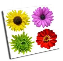 Коллаж с красочными цветами