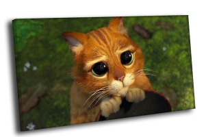 Кот из Шрека
