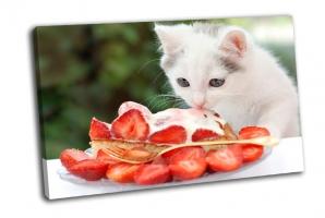 Котенок ест клубничный торт со сливками