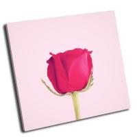 Красивая красная роза с ретро эффект