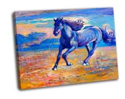 Красивая синяя лошадь