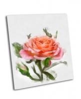 Красивая светло-розовая роза