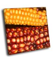 Кукуруза и гранат