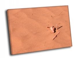 Манекен в песке