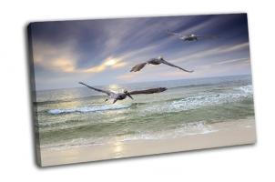Пеликаны летящие над морем