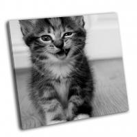 Подмигивающий котенок