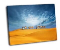 Путешествие верблюдов