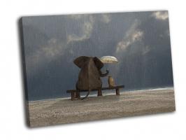 Слон и собака под дождем