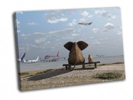 Слон и собака сидят в аэропорту