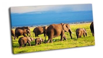 Стадо слонов в африканской Саванне