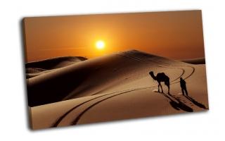 Верблюд с пастухом в пустыне