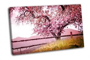 Весенние цветы на дереве