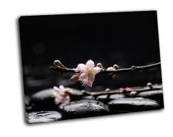 Ветка сакуры с черными камнями