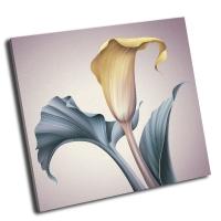 Винтаж, иллюстрация цветок калла