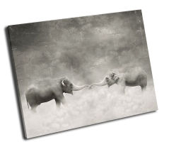 Влюбленные слоны