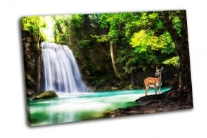 Водопад Эраван с животным