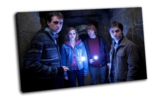Волшебники  и Гарри  Поттер
