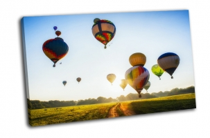 Воздушные шары над полем