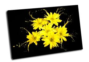 Ярко-желтые цветы