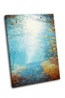 Загадочный туманный путь в осень