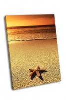 Звезда на закате моря