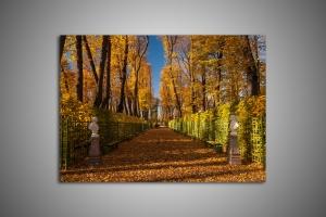 Летний сад осенью в Санкт-Петербурге