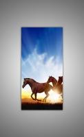 Лошади на закате-2