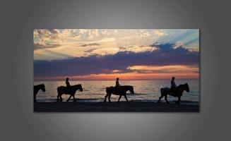 Прогулка на лошадях ночью