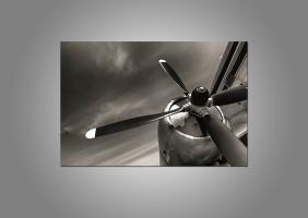 Пропеллер самолета