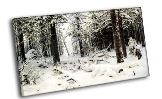 И. Шишкин - Зима