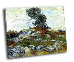 Ван Гог - Валуны и дуб (1888)
