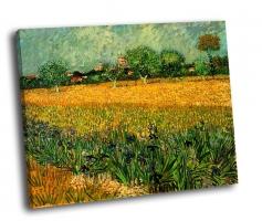 Ван Гог - Вид Арля с ирисами